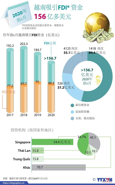 图表新闻:越南上半年引进的外资总额达156.7亿美元 hinh anh 1