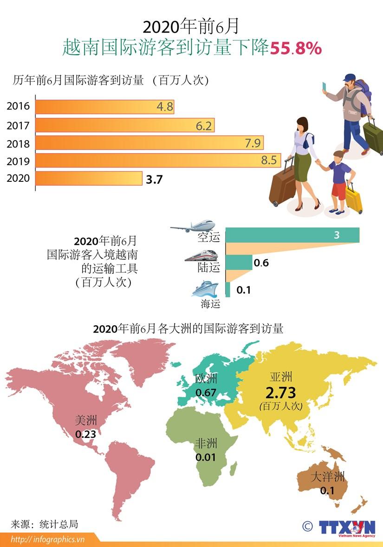 图表新闻:2020年前6月,越南接待国际游客量下降55.8% hinh anh 1