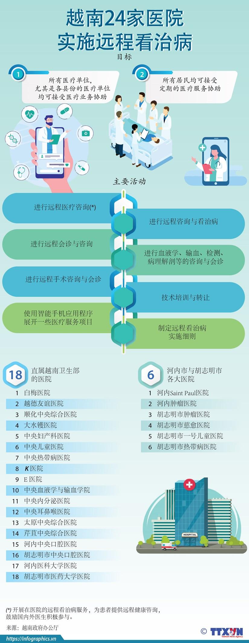 图表新闻:越南共有24家医院实施远程看治病 hinh anh 1