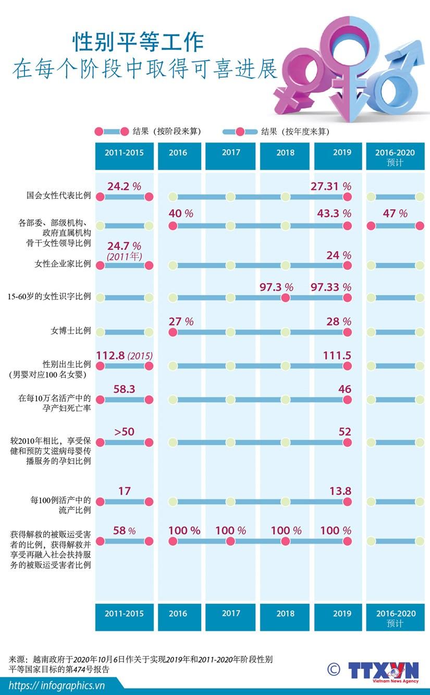图表新闻:越南在执行性别平等工作中取得可喜成就 hinh anh 1