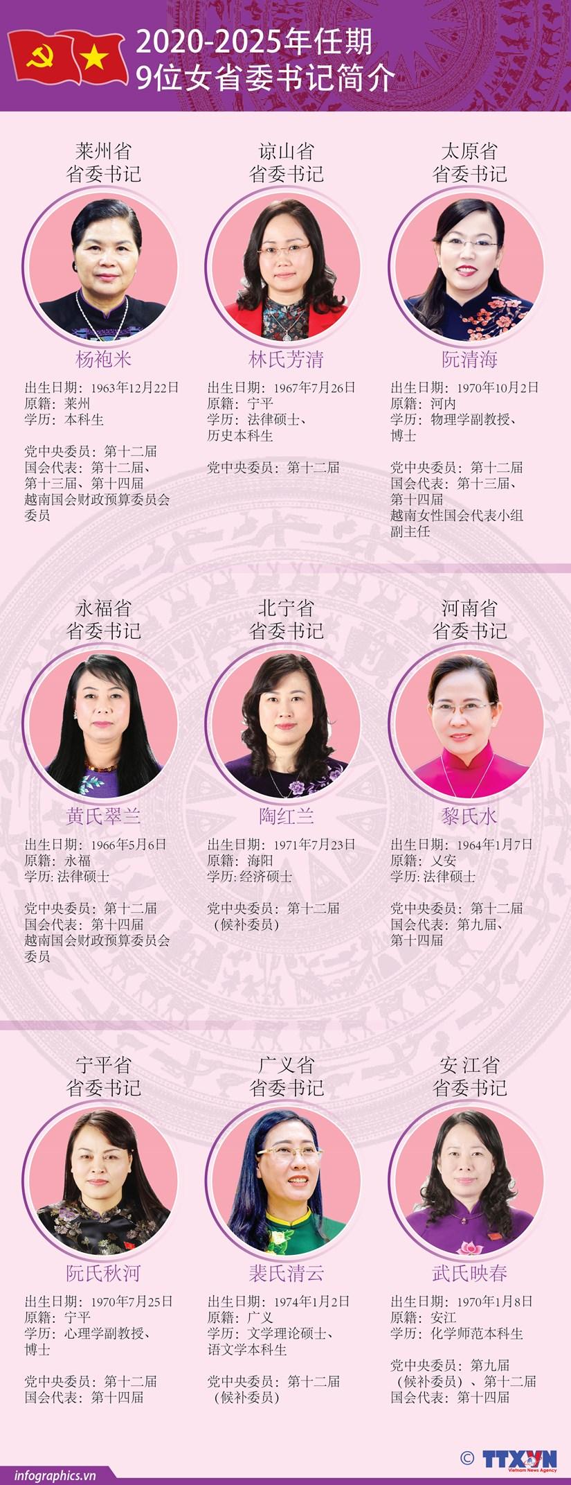 图表新闻:越南9位女省委书记简介 hinh anh 1