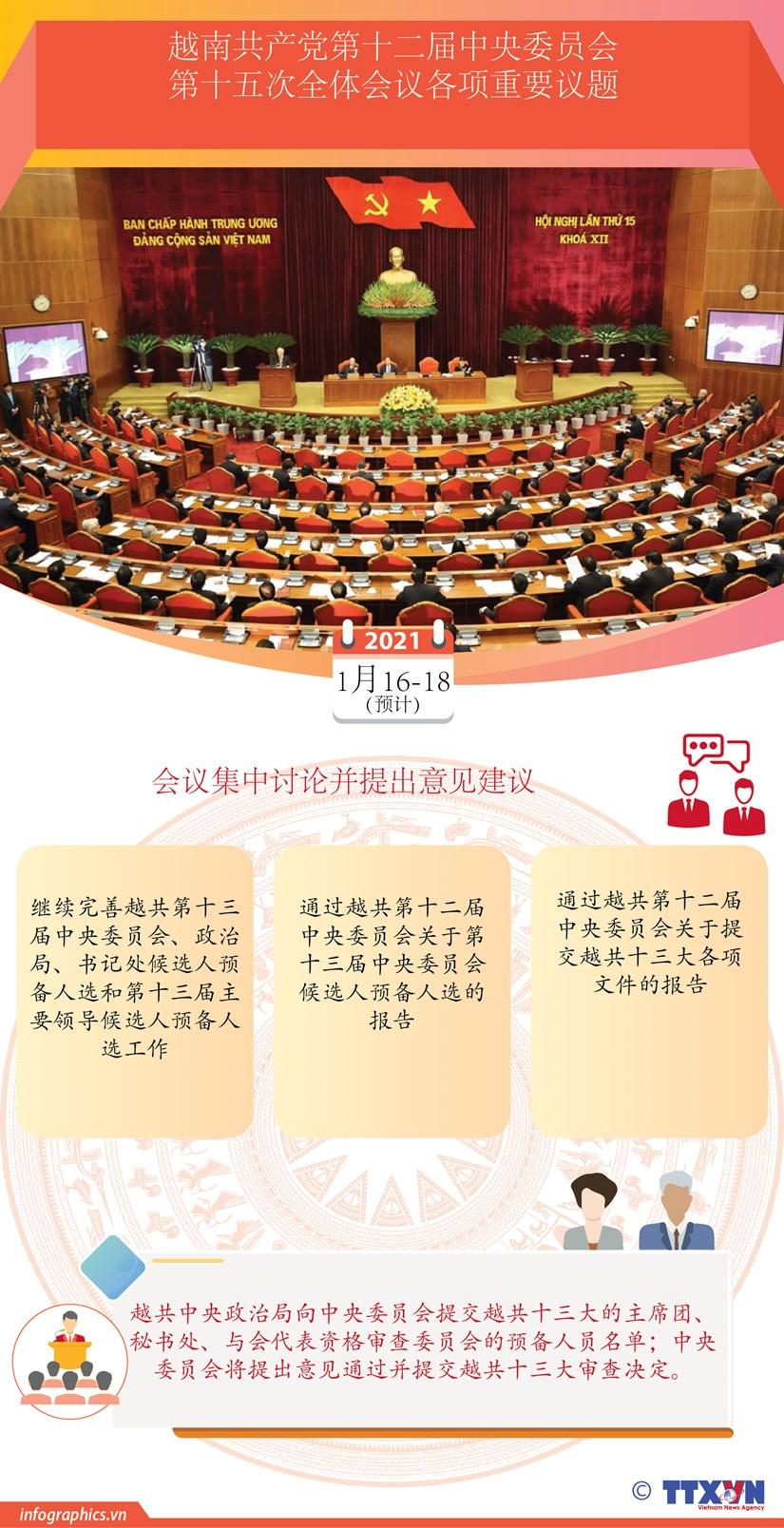 图表新闻:越南共产党第十二届中央委员会第十五次全体会议各项重要议题 hinh anh 1