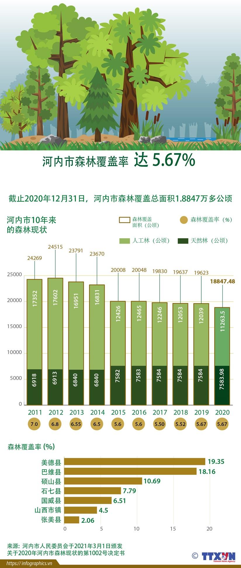 图表新闻:河内市森林覆盖率达 5.67% hinh anh 1