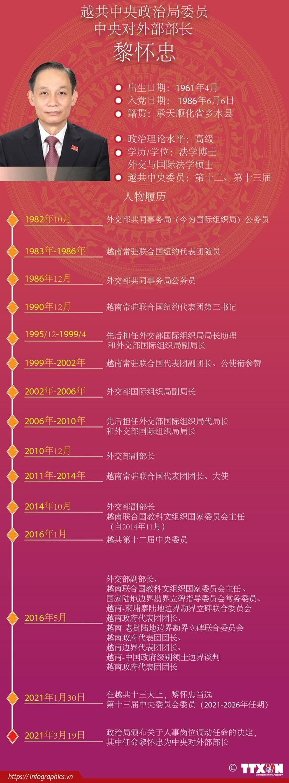 图表新闻:黎怀忠同志被任命为越共中央对外部部长 hinh anh 1