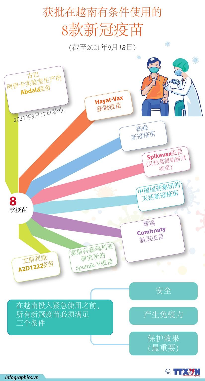 图表新闻:越南卫生部有条件批准第8款新冠疫苗 hinh anh 1
