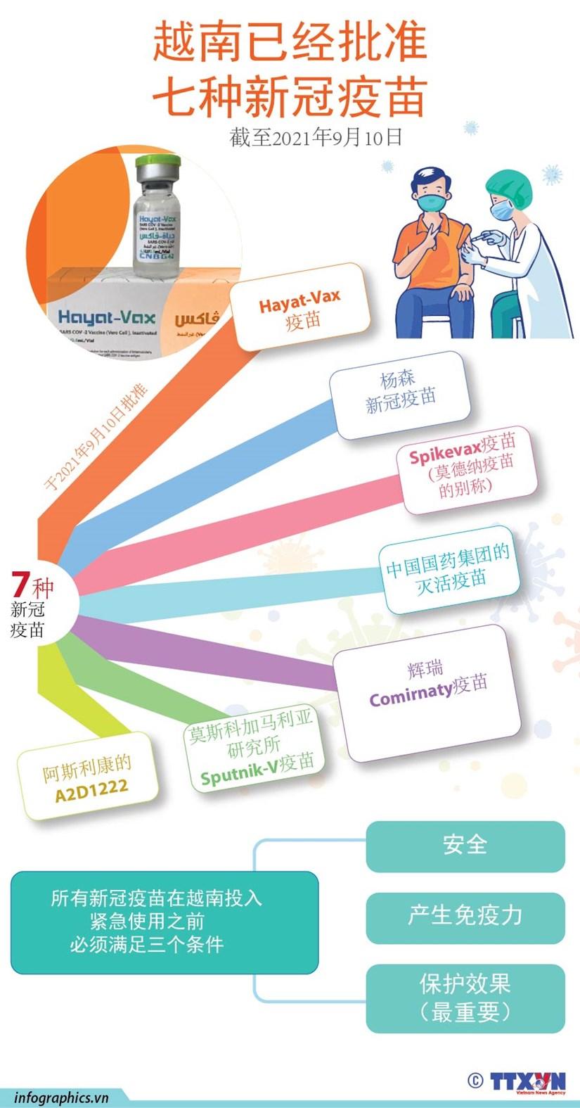 图表新闻:越南已经批准七种新冠疫苗 hinh anh 1