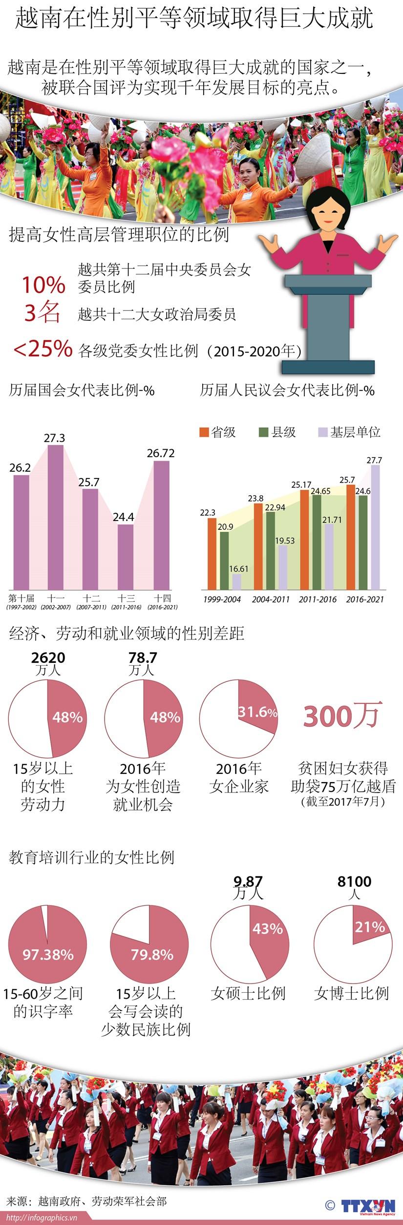 图表新闻:越南在性别平等领域取得巨大成就 hinh anh 1