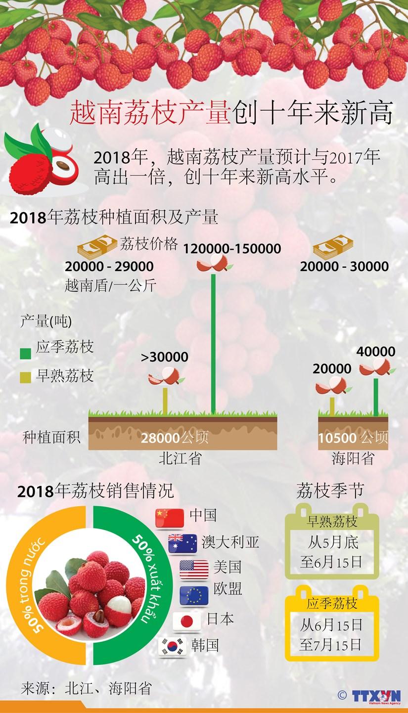 图表新闻:越南荔枝产量创十年来新高 hinh anh 1