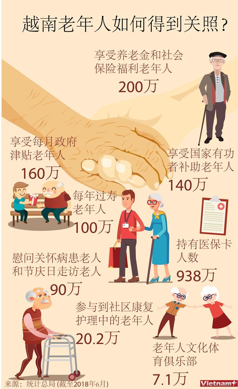 图表新闻:越南老年人如何得到关照? hinh anh 1
