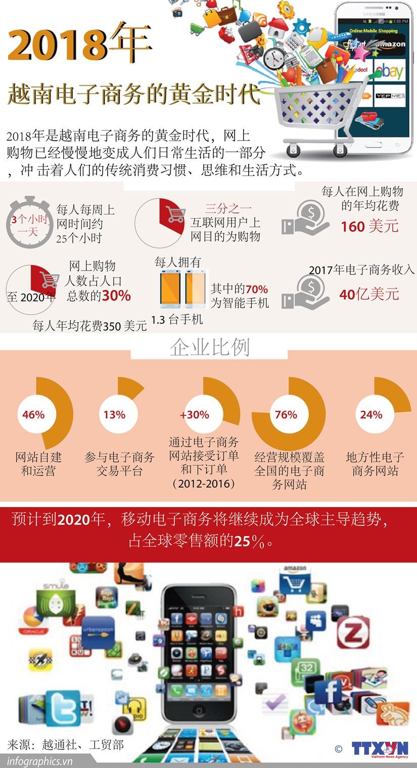 图表新闻:2018年——越南电子商务的黄金时代 hinh anh 1