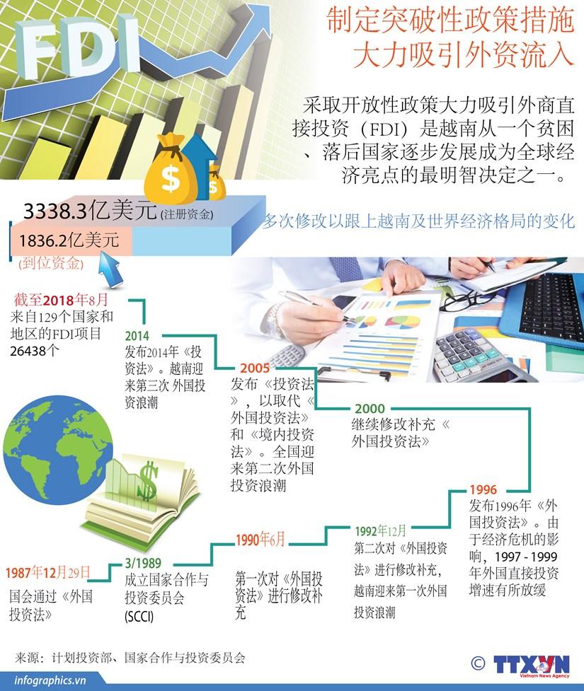 图表新闻:制定突破性政策措施 大力吸引外资流入 hinh anh 1
