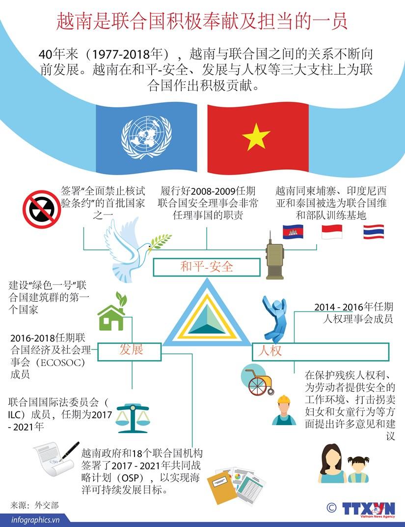 图表新闻:越南是联合国积极奉献及担当的一员 hinh anh 1