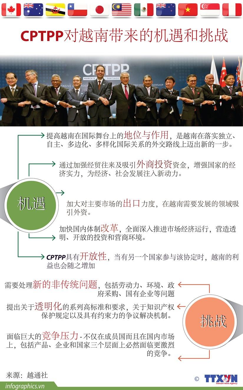 图表新闻: CPTPP对越南带来的机遇和挑战 hinh anh 1