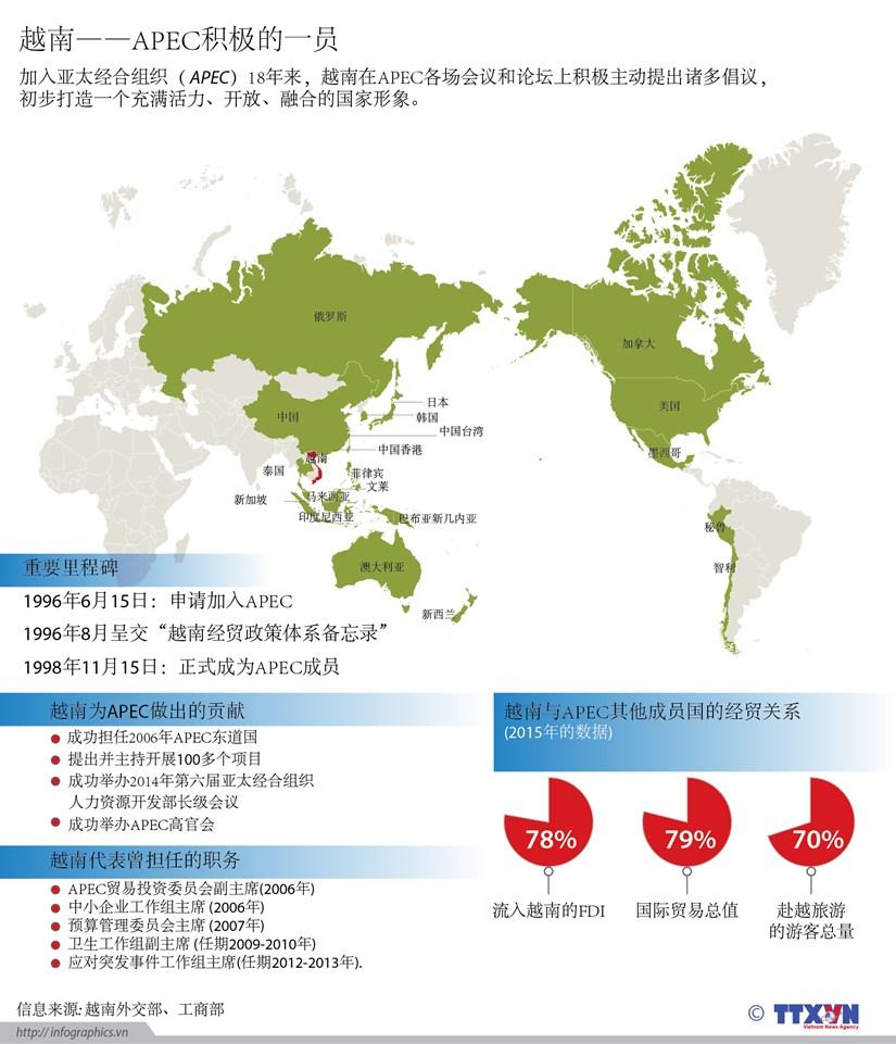 越南——APEC积极的一员 hinh anh 1