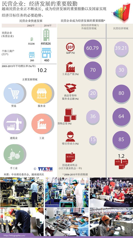 民营企业:经济发展的重要殷勤 hinh anh 1