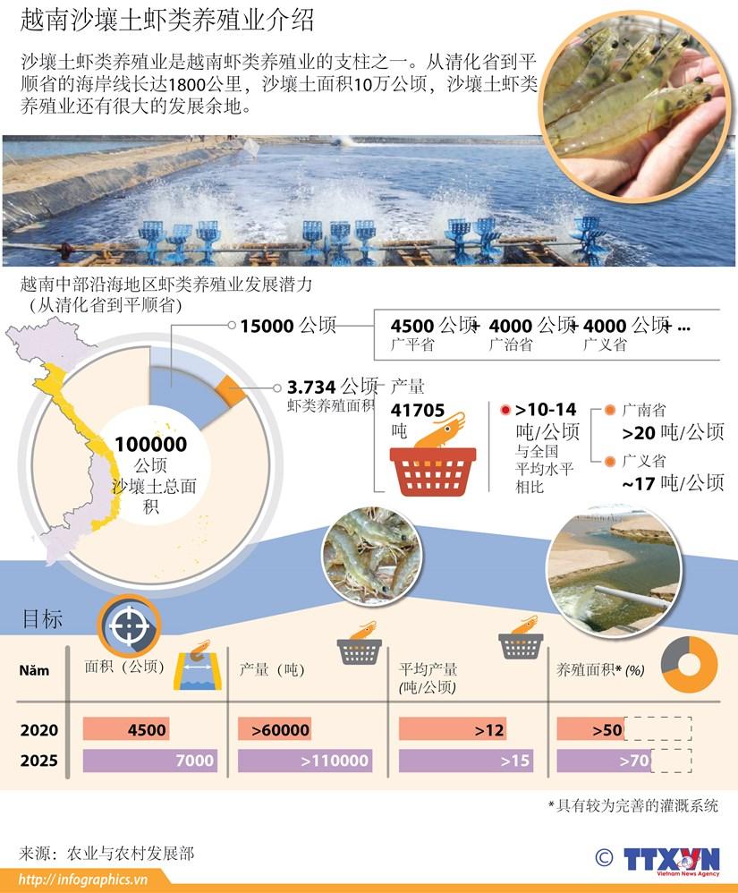 越南沙壤土虾类养殖业介绍 hinh anh 1