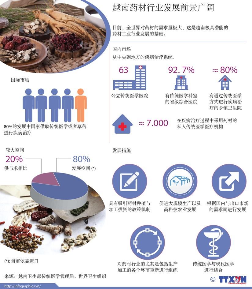 图表新闻:越南药材行业发展前景广阔 hinh anh 1
