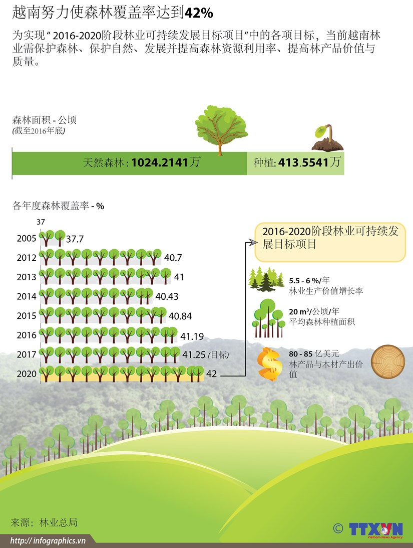 图表新闻:越南努力使森林覆盖率达到42% hinh anh 1