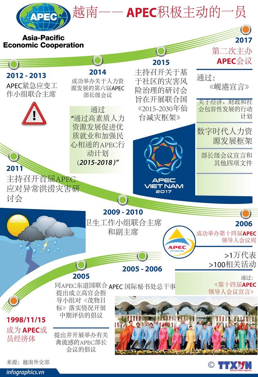 图表新闻:越南—— APEC积极主动的一员 hinh anh 1