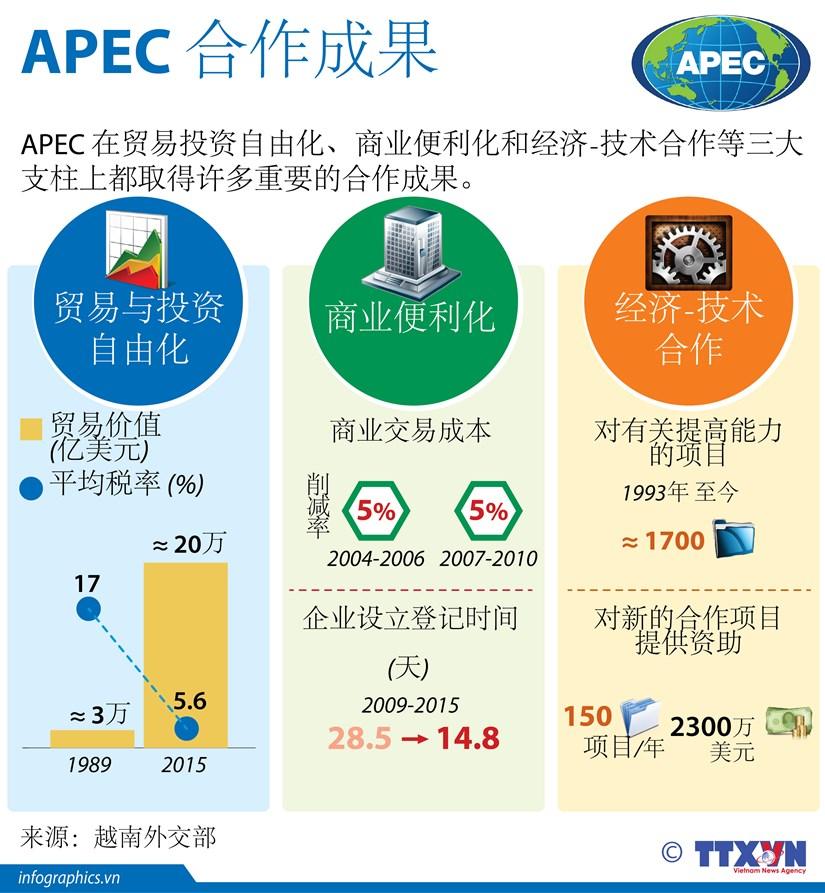 图表新闻:APEC 合作成果 hinh anh 1