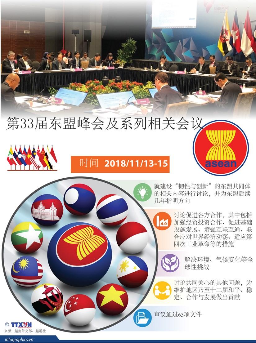图表新闻:第33届东盟峰会及系列相关会议 hinh anh 1