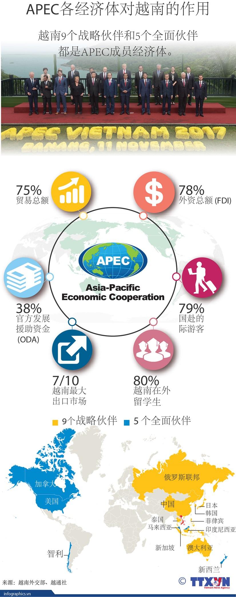 图表新闻:APEC各经济体对越南的作用 hinh anh 1