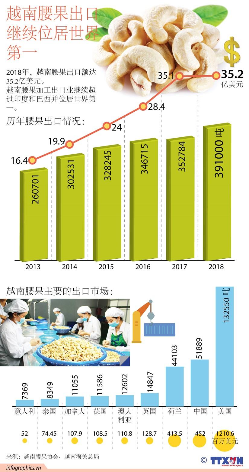 图表新闻:越南腰果出口继续位居世界第一 hinh anh 1