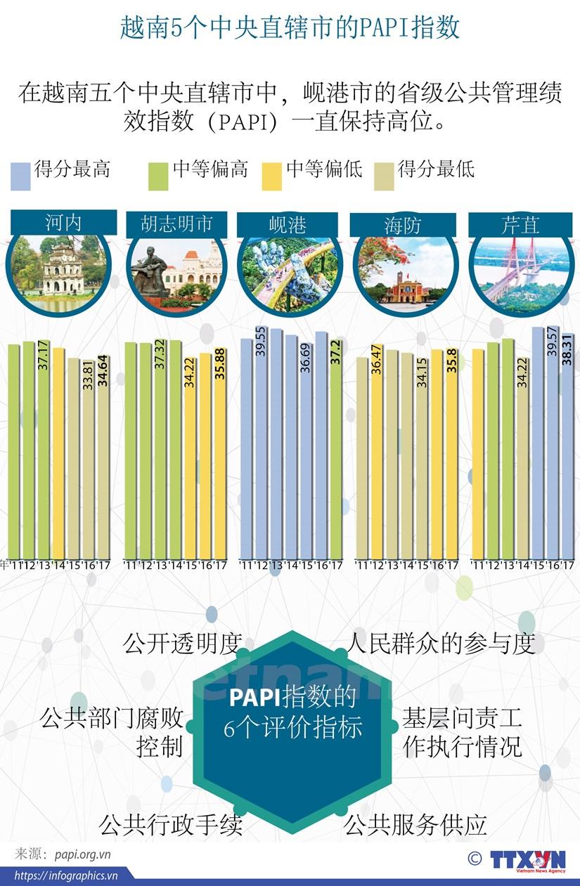 图表新闻:越南5个中央直辖市的PAPI指数 hinh anh 1