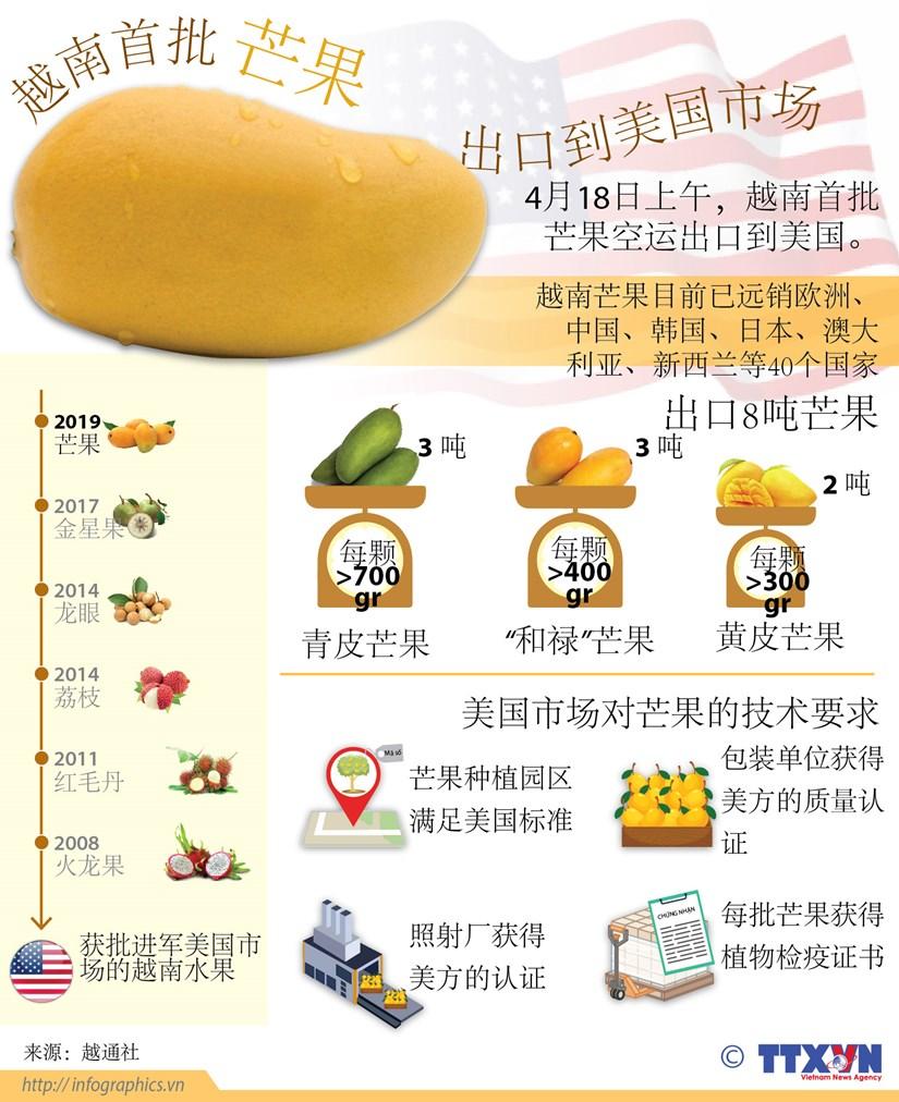 越南首批芒果出口到美国市场(图表) hinh anh 1