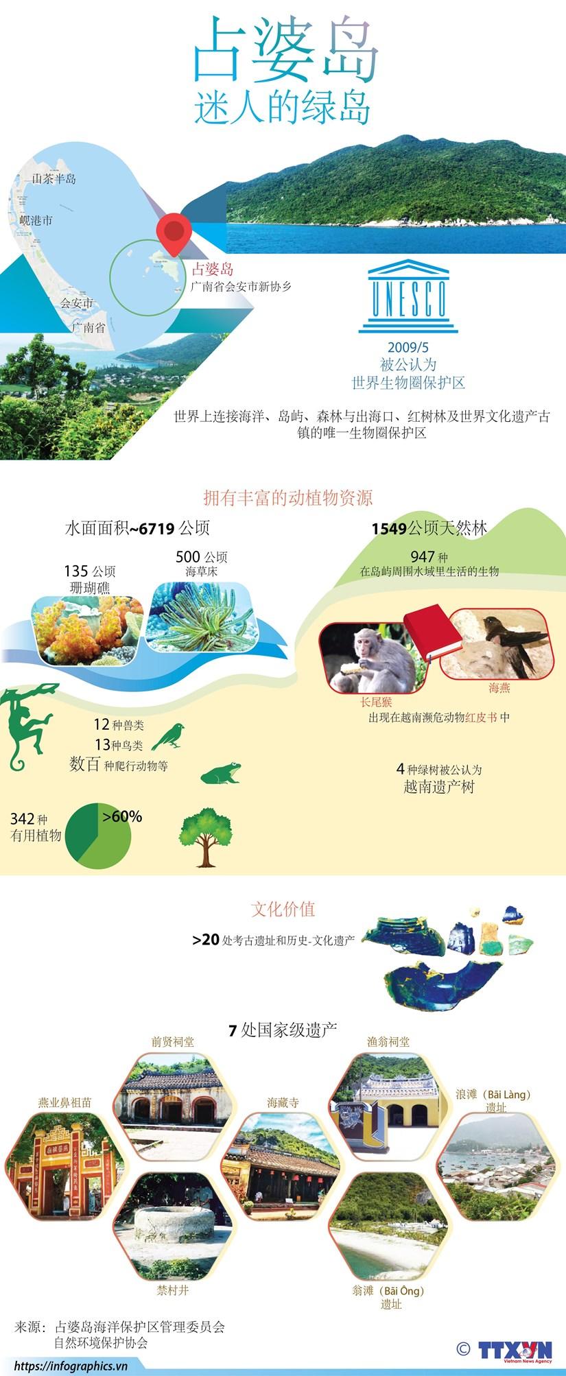 图表新闻:占婆岛——迷人的绿岛 hinh anh 1