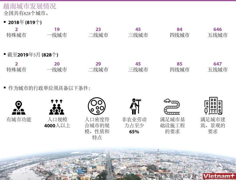 图表新闻:越南城市发展情况 hinh anh 1