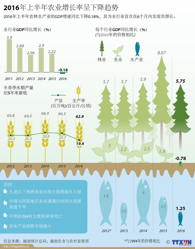 2016年上半年农业增长率呈下降趋势 hinh anh 1