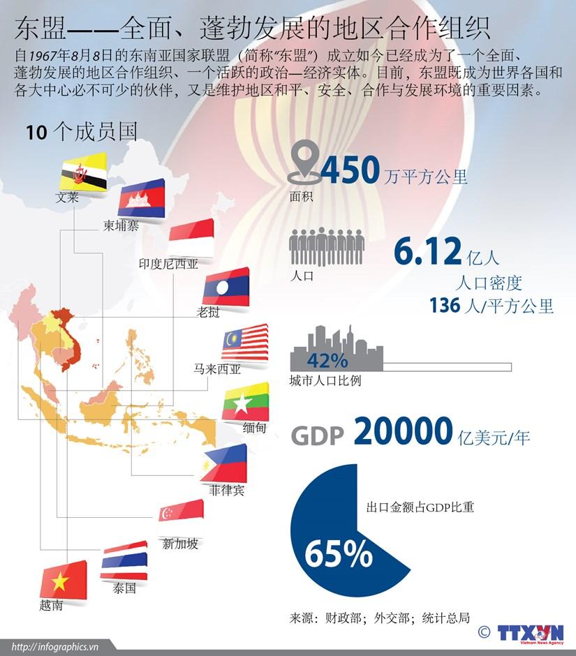 东盟——全面、蓬勃发展的地区合作组织 hinh anh 1