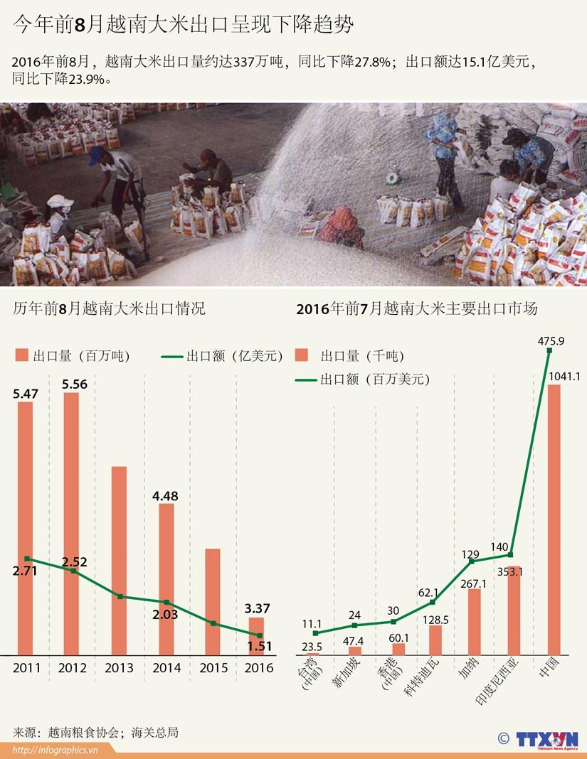 今年前8月越南大米出口呈现下降趋势 hinh anh 1