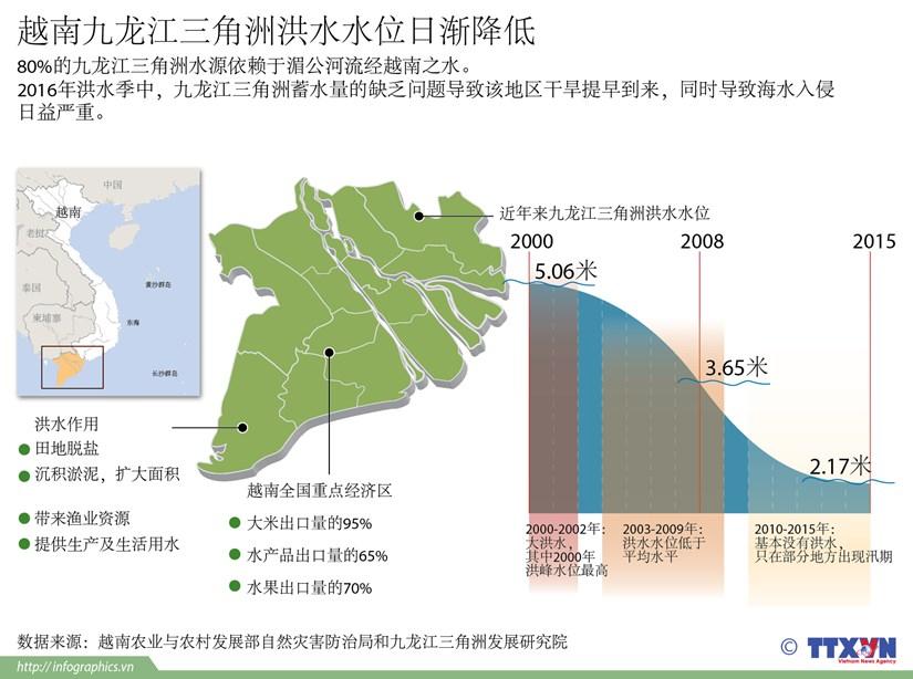 越南九龙江三角洲洪水水位日渐降低 hinh anh 1