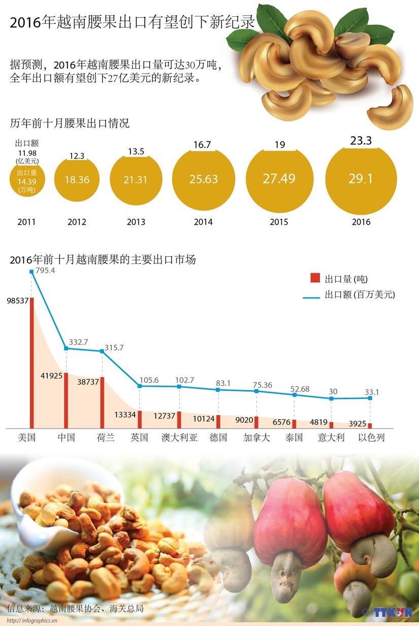 2016年越南腰果出口有望创下新纪录 hinh anh 1