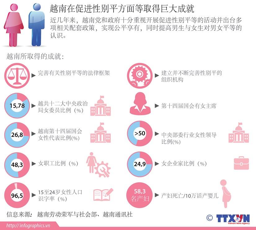 越南在促进性别平方面等取得巨大成就 hinh anh 1