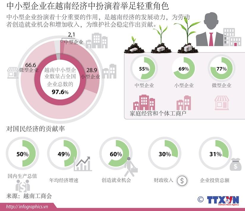 中小型企业在越南经济中扮演着举足轻重角色 hinh anh 1