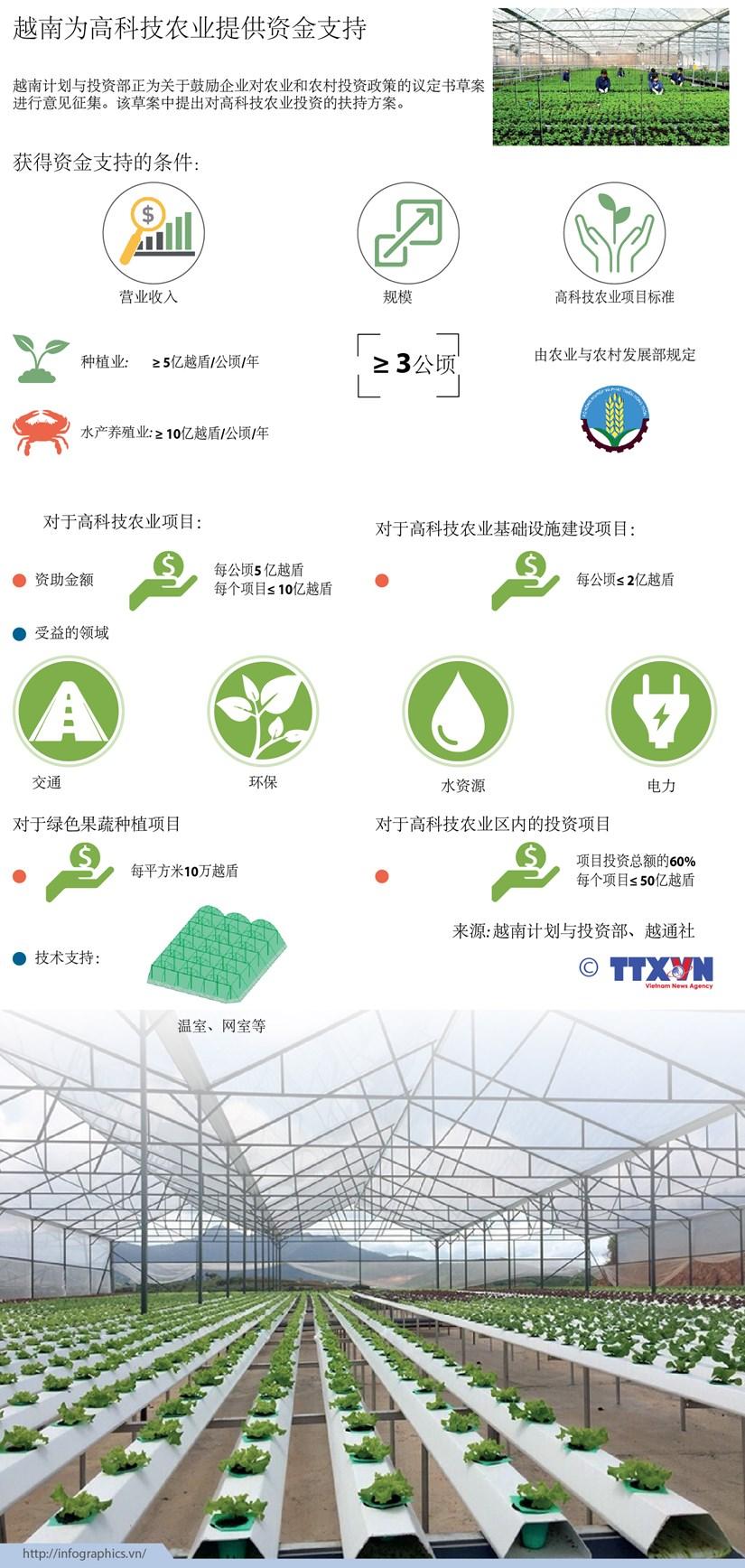 越南为高科技农业提供资金支持 hinh anh 1