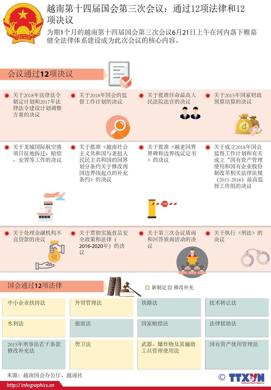 越南第十四届国会第三次会议:通过12项法律和12项决议 hinh anh 1