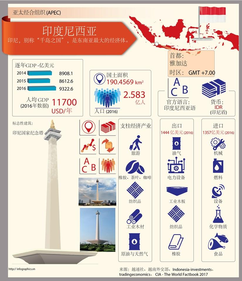 越南-印度尼西亚的战略合作伙伴关系 hinh anh 1