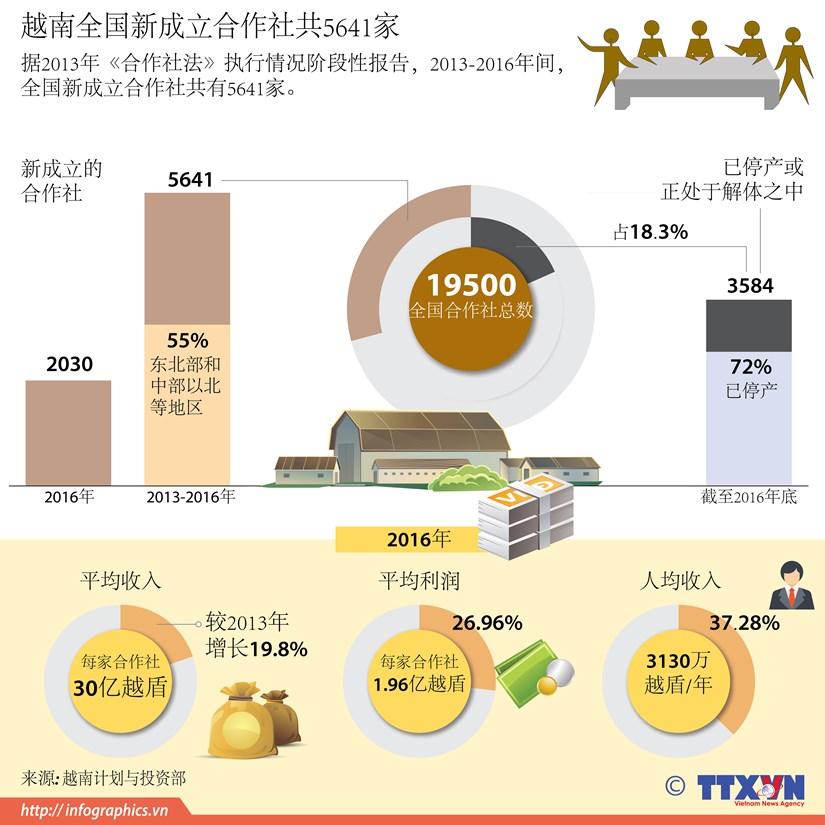 图表新闻:越南全国新成立合作社共5641家 hinh anh 1