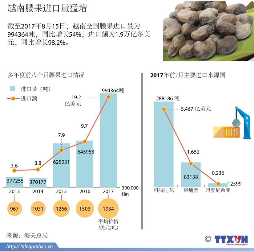 图表新闻:越南腰果进口量猛增 hinh anh 1
