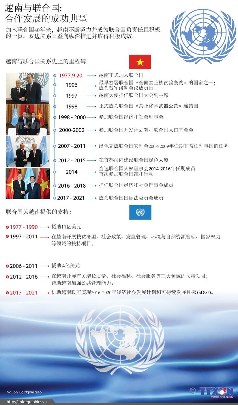 图表新闻:越南与联合国—— 合作发展的成功典型 hinh anh 1