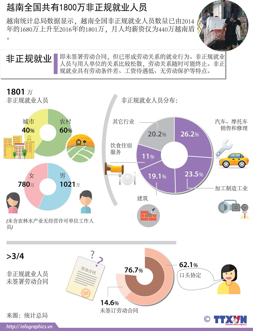 图表新闻:越南全国共有1800万非正规就业人员 hinh anh 1