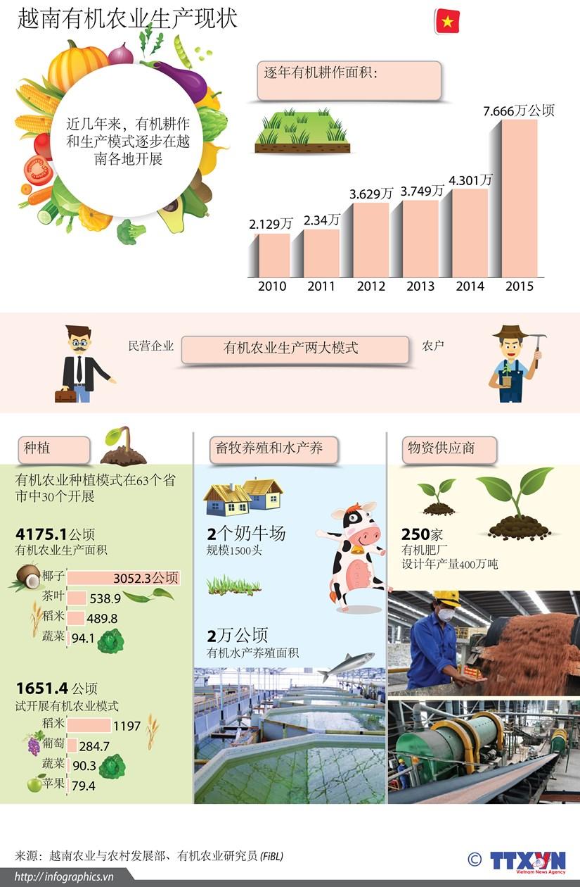 图表新闻:越南有机农业生产现状 hinh anh 1