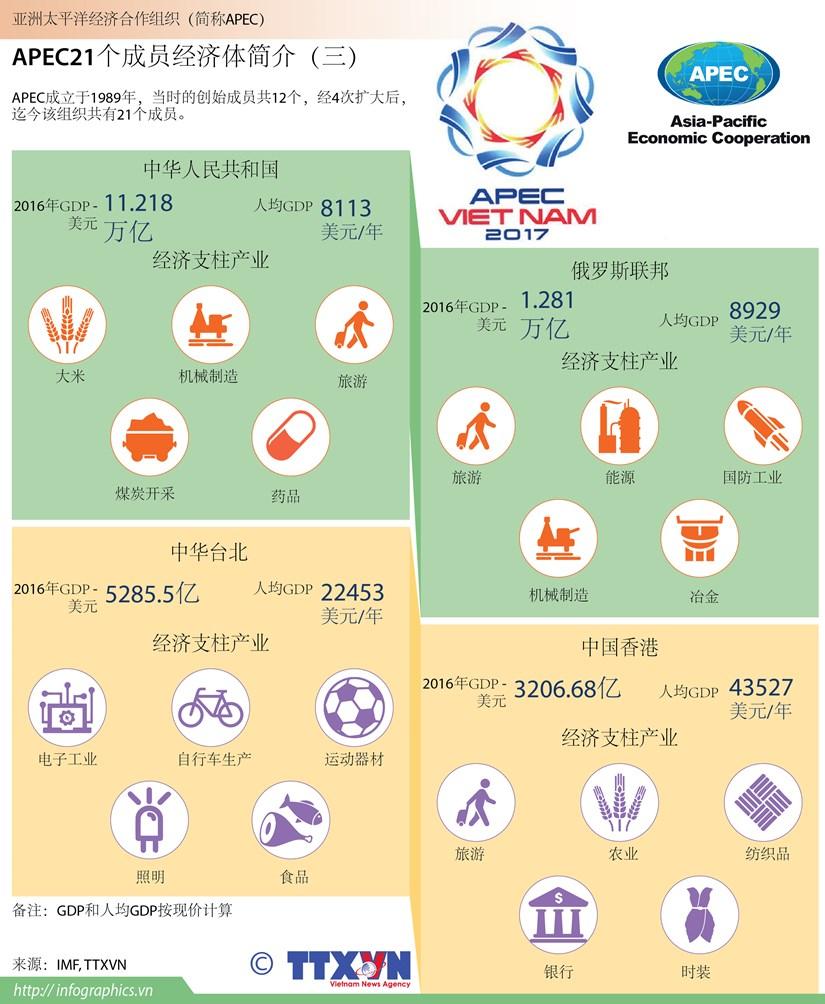 图表新闻:APEC21个成员经济体简介(三) hinh anh 1