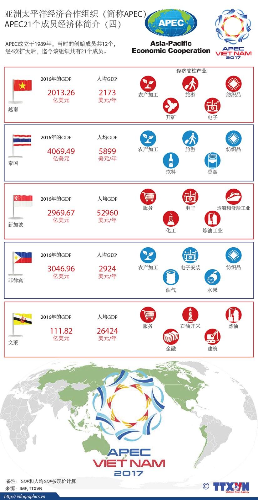 图表新闻:APEC21个成员经济体简介(四) hinh anh 1