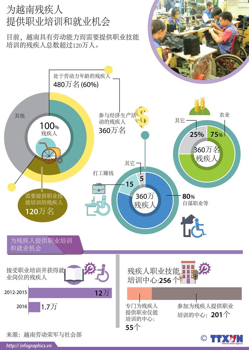 图表新闻:为越南残疾人提供职业培训和就业机会 hinh anh 1