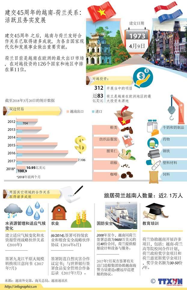 图表新闻:越南与荷兰关系活跃且务实发展 hinh anh 1